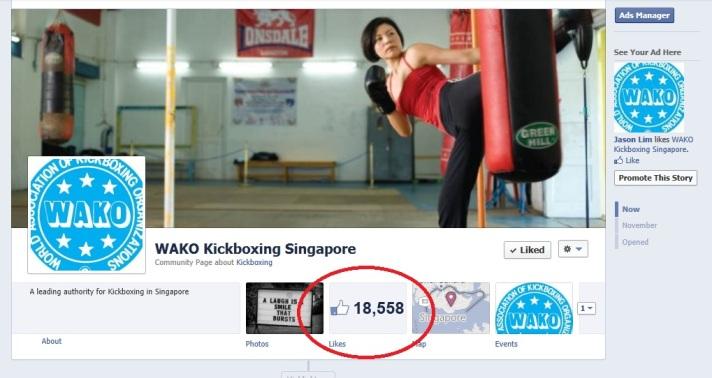 WAKO Kickboxing Singapore Facebook Page