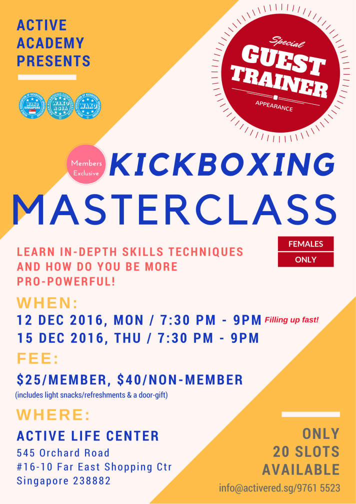 kickboxing-masterclass-12-dec-2016-2