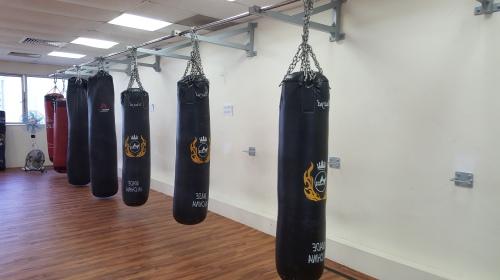 Punching Bags_1
