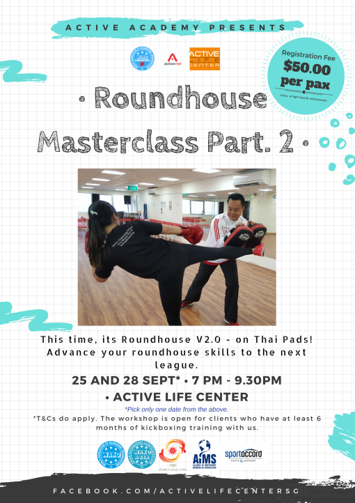 Roundhouse Masterclass Part 2 (Thai Pads)