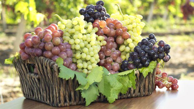 grapes_620x350_81488283539